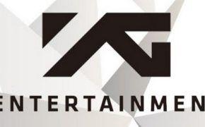 Как купить акции YG Entertainment (122870) — график и динамика стоимости