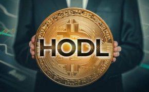 Hodl (Ходлинг) — что это такое в криптовалюте